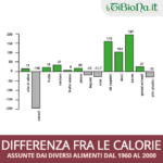 Calorie: differenze nelle kcal dal 1960 al 2000
