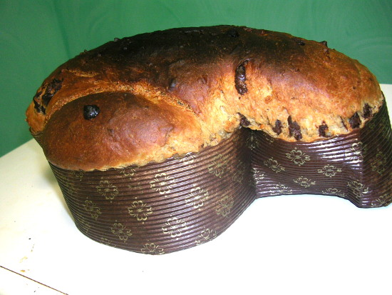 colomba-small