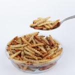 Cibo del futuro: alimenti a base di insetti sugli scaffali della Coop